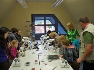 Mikroskopieren im Um-Weltbildungsraum