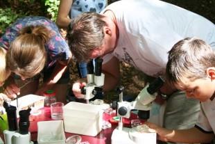 Mikroskopieren_770